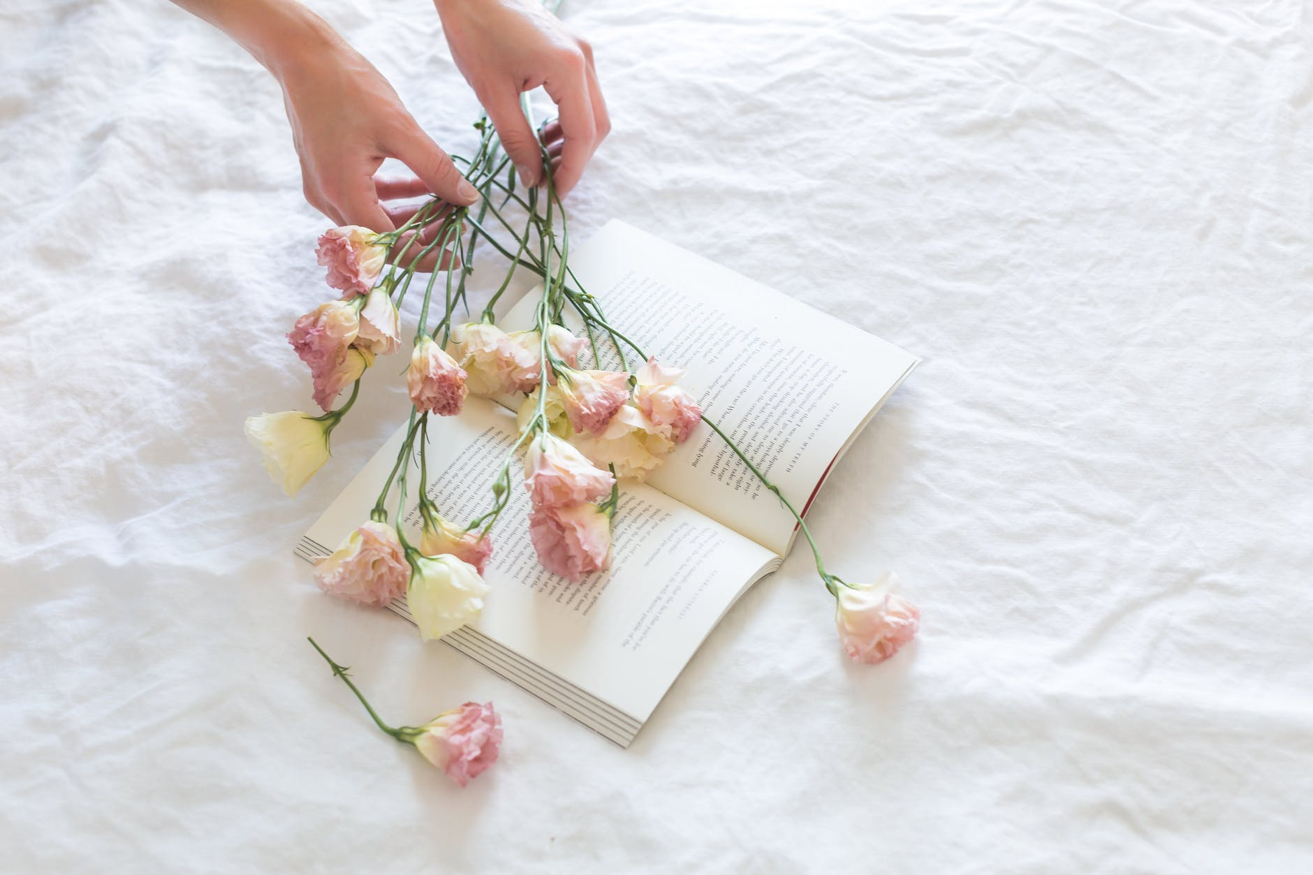 pink and white rose flowers on white printer book